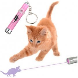 Cat Toy - Laser Pointer with Mouse Image / Keychain