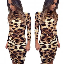 Women's Leopard Print Long Sleeve Dress