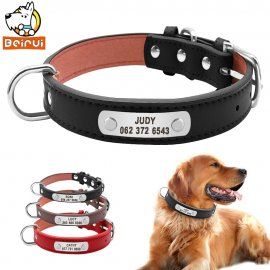 Leather dog collar with your chosen name and phone number